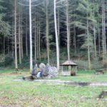 Bois de Lourdes